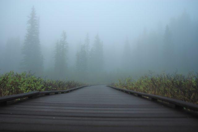 霧に遭遇したら