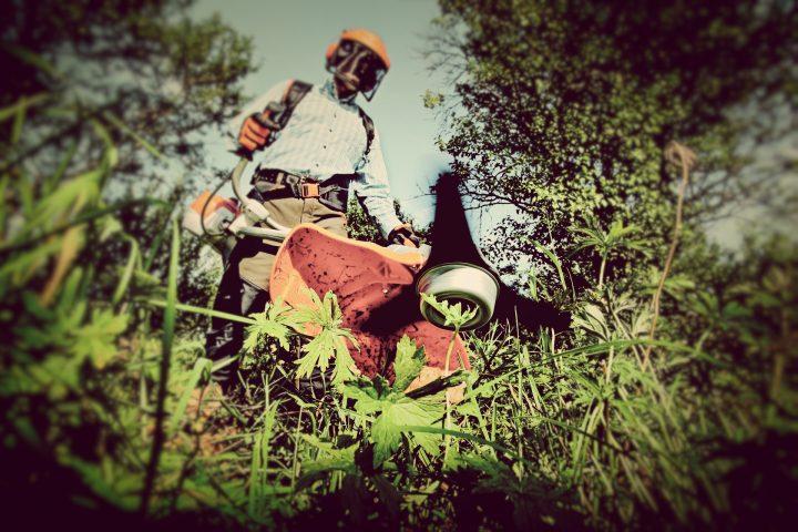 草刈り機で注意すること