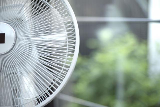 気温が高い時は注意