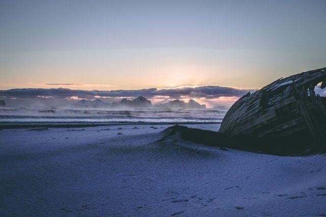 寒波で海の生物にもダメージ