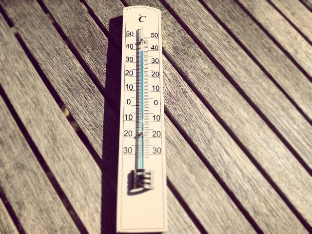 気温が異常に高い中に子どもやペットは生活している