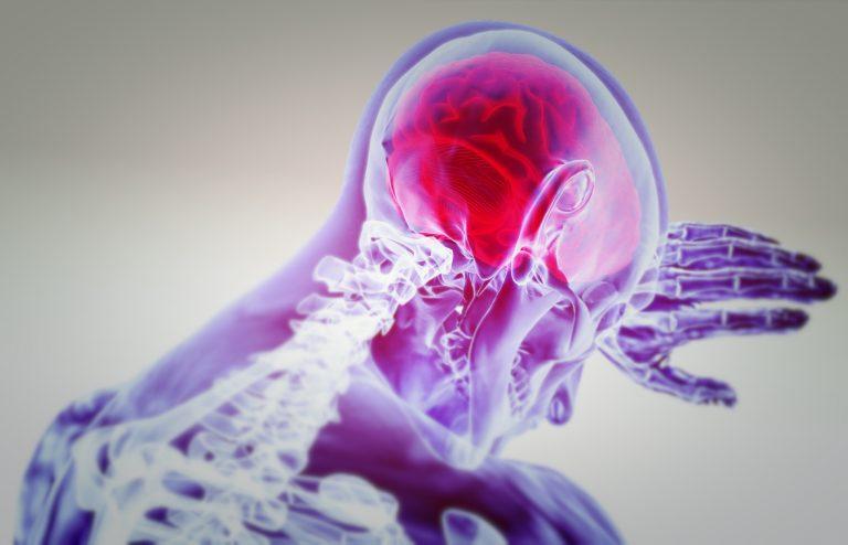 脳食いアメーバは身近に…