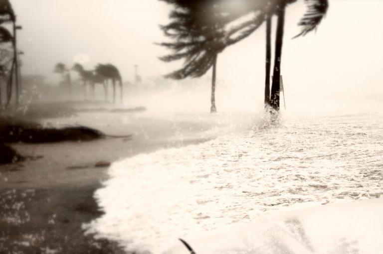 台風19号ハギビスのイメージ